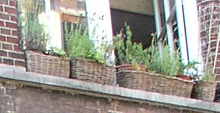 vensterbank.jpg